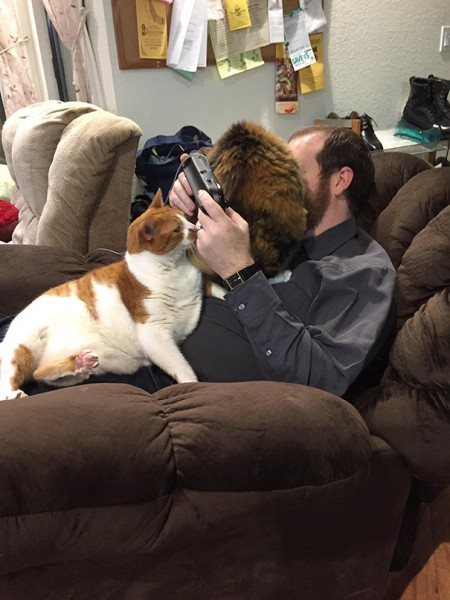 cats personal space 4