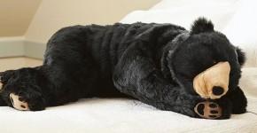 bear sleeping bag 2
