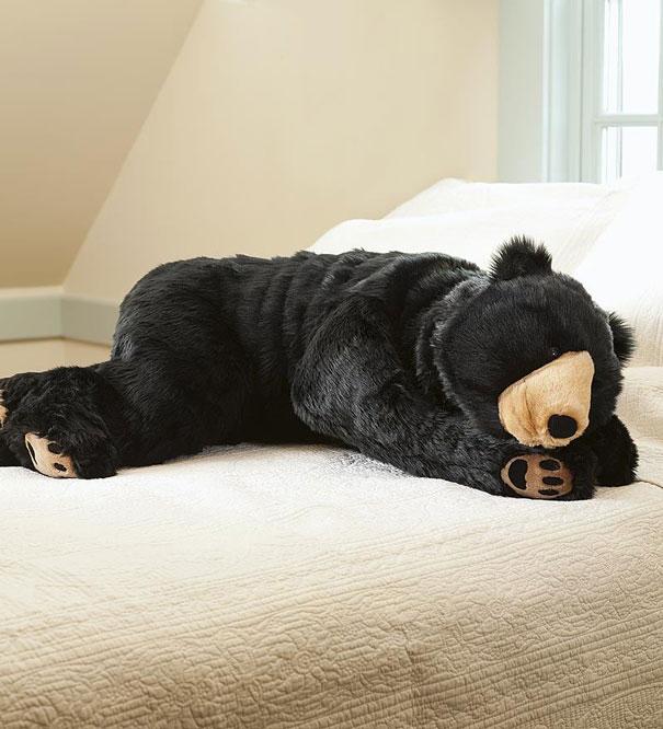 go into deep hibernation for the rest of the cold winter. Black Bedroom Furniture Sets. Home Design Ideas