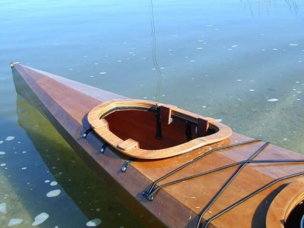 kayak dogs 2