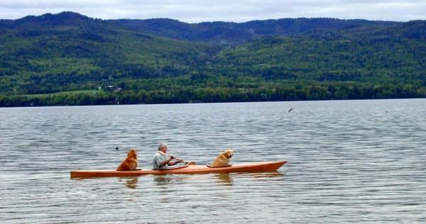 kayak dogs 3
