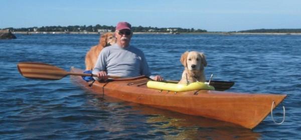kayak dogs 4