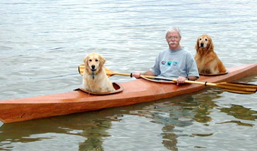kayak dogs 5