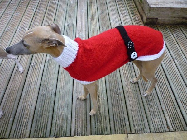 sweatersfor greyhounds 6