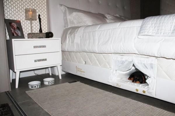 pet bed 1