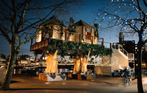 south african treehouse 2