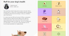 dog toxic foods 4