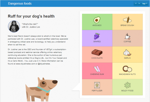 dog toxic foods 4
