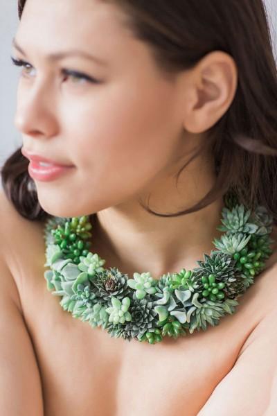 succulent jewels 2