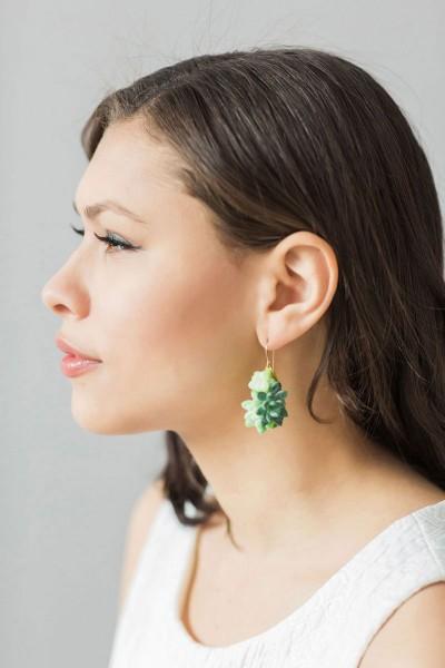 succulent jewels 6