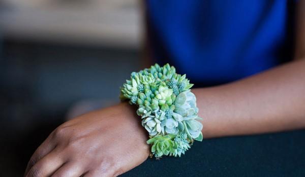 succulent jewels 9