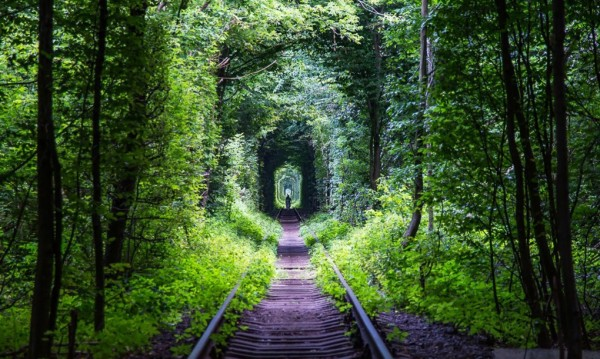 ukraine leafy tunnel 4