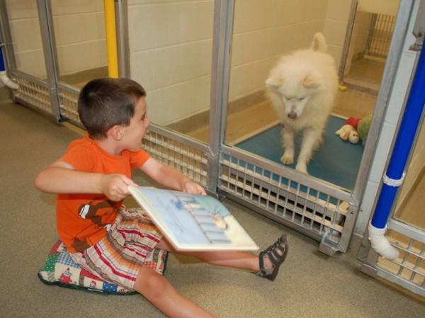 shelter buddies reading program 3
