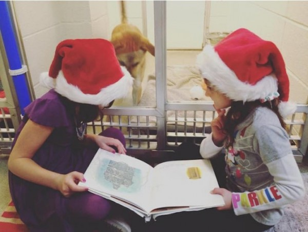 shelter buddies reading program 5