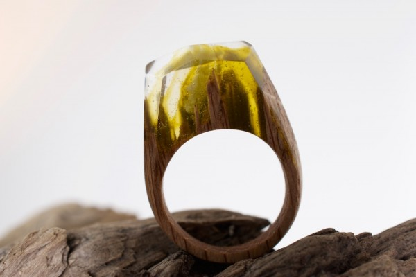 secret wood ring 1