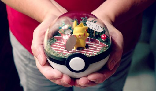pokeball-terrarium-1