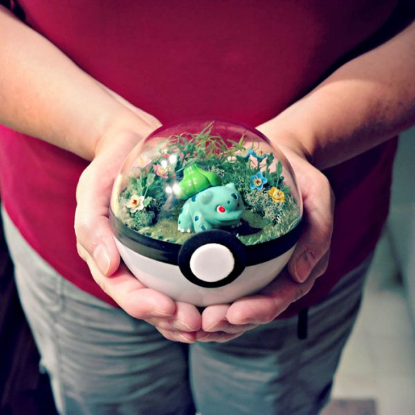 pokeball-terrarium-21