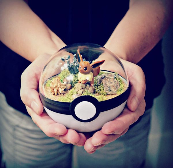 pokeball-terrarium-3