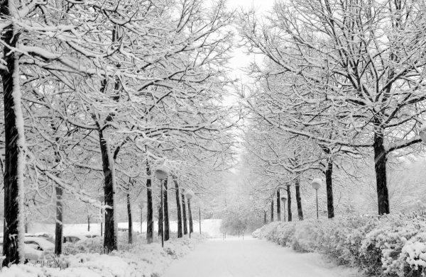 winter-countries-9