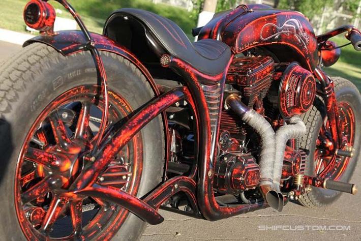 customizingchampionphotos 24 Champion Customizer
