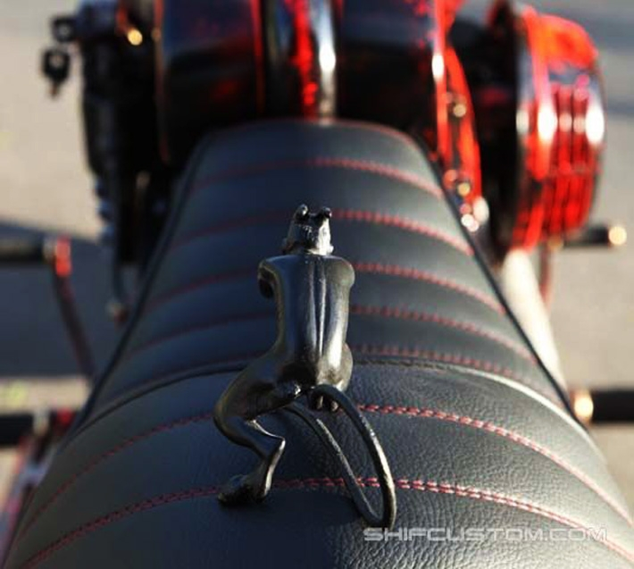 customizingchampionphotos 25 Champion Customizer